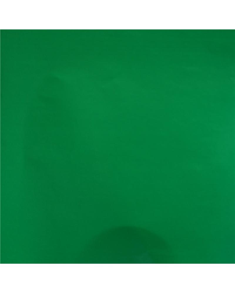 Papel Normal Verde Liso (min. 25) - Verde - 70x100cm - PP1940