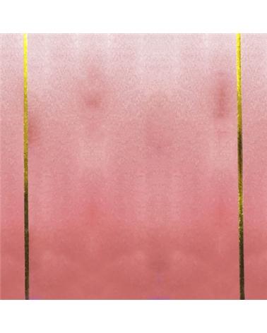 FT0913 | Ruban De Soie Brillant Rose 19mm