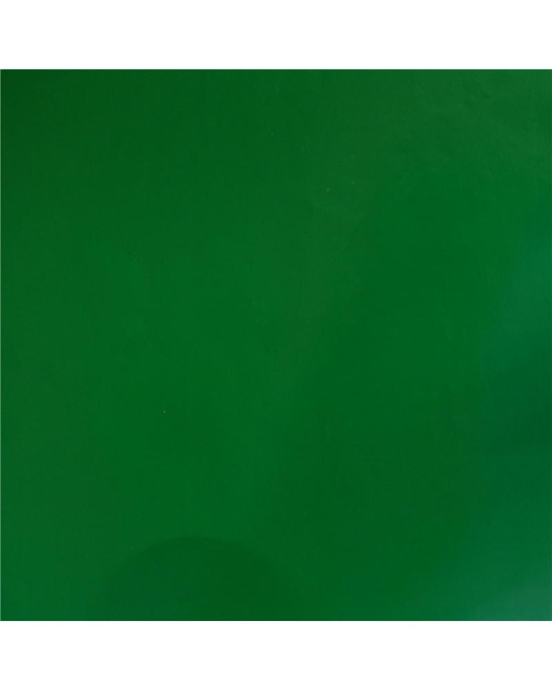 Papel Couché Branco Fundo Verde - Verde - 70x100cm - PP1261