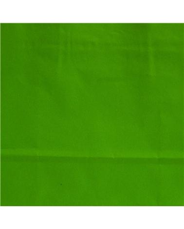 Saco Asa Retorcida Branco Liso Fundo Verde Claro - Verde Claro - 18+08x21 - SC3349