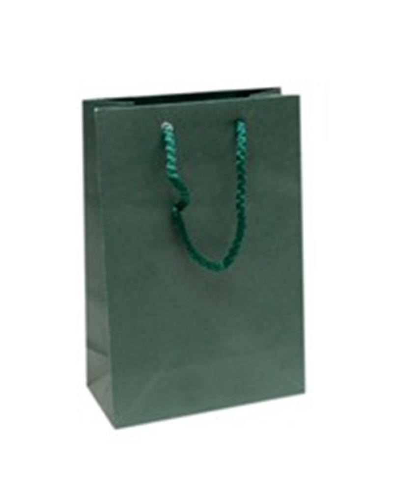 Saco Asa Cordão Verde Mate - Verde - 16+08X24 - PR0393
